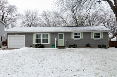 Carol Stream Single Family Home For Sale: 541 North Silverleaf Boulevard