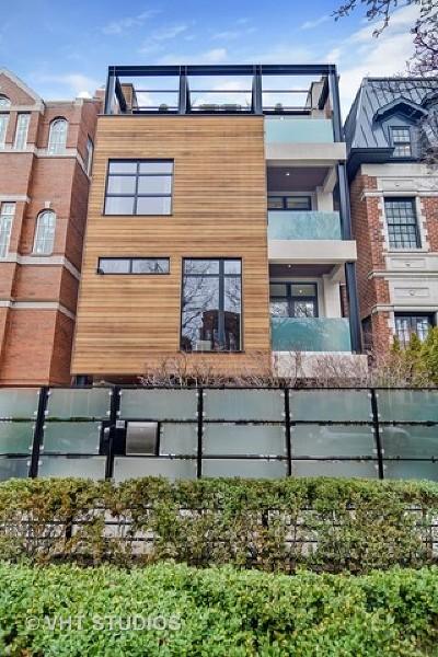 Chicago Single Family Home New: 1034 West Altgeld Street