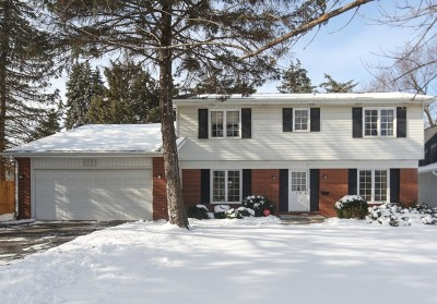 Hinsdale Single Family Home For Sale: 128 Columbia Avenue
