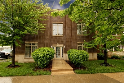 Chicago Condo/Townhouse New: 1738 West 91st Street #1W