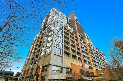 Chicago Condo/Townhouse New: 1530 South State Street #18M