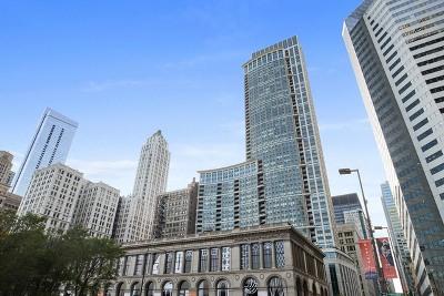 Chicago IL Condo/Townhouse New: $1,130,000