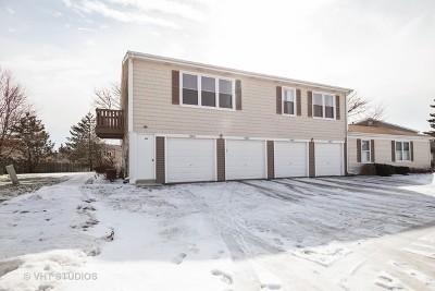 Schaumburg Condo/Townhouse For Sale: 1063 Hampton Harbor #1063