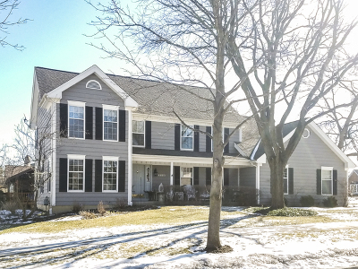 Palatine Single Family Home New: 4660 Angeline Court