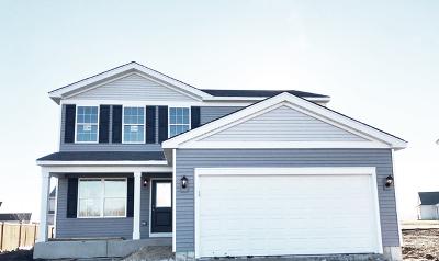 Dekalb Single Family Home For Sale: 1724 Moluf Street