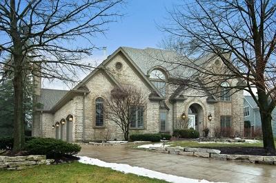 Burr Ridge Single Family Home New: 49 Ridgefield Lane