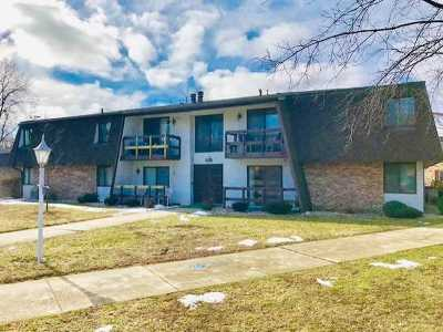 Kankakee Condo/Townhouse For Sale: 1080 South Nelson Avenue #6