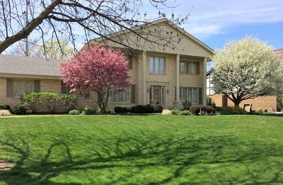 Burr Ridge Single Family Home New: 8532 Heather Drive