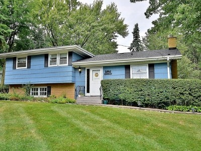 Downers Grove Single Family Home New: 1028 59th Street