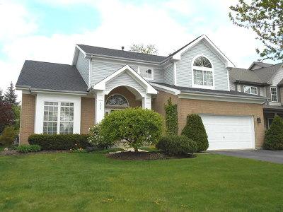Palatine Single Family Home New: 525 North Smith Street