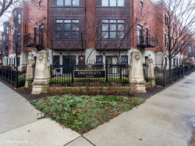 Chicago Condo/Townhouse New: 1448 South Sangamon Street