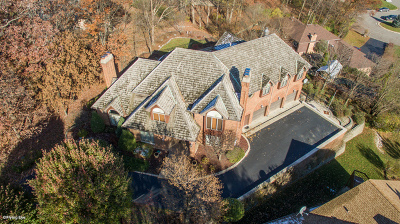 Homer Glen Single Family Home New: 16139 South Pin Oak Court