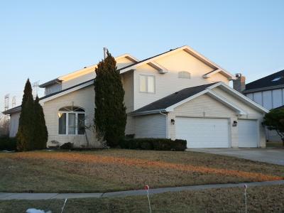 Homer Glen Single Family Home New: 14127 Rado Drive East