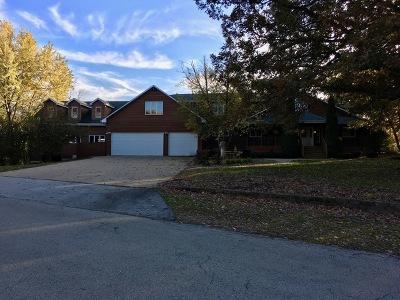 New Lenox Single Family Home New: 193 Pottawatomie Lane