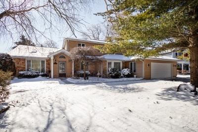 Palatine Single Family Home New: 351 West Michigan Avenue