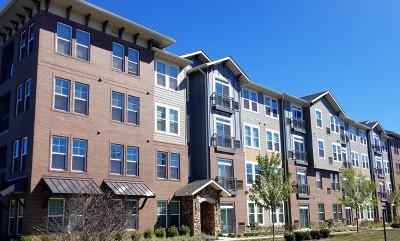 Rental New: 700 East Algonquin Road #2201