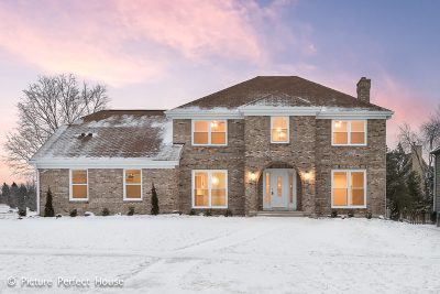 Naperville Single Family Home For Sale: 681 Alexandria Drive