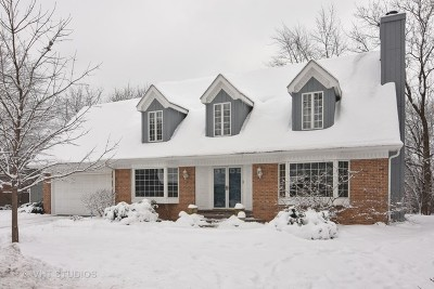 Palatine Single Family Home New: 4865 Rhiannon Court