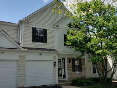 Condo/Townhouse For Sale: 153 Park Ridge Court