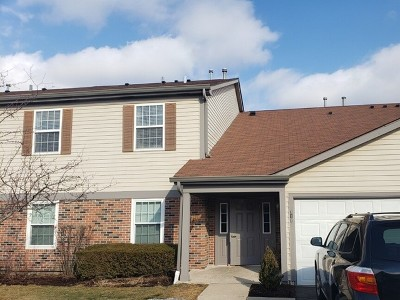 Palatine Condo/Townhouse For Sale: 719 East Whispering Oaks Drive #2RY