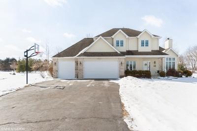 Mc Henry County Single Family Home New: 4818 Patty Lane