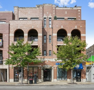 Chicago Condo/Townhouse New: 3344 North Halsted Street #3S