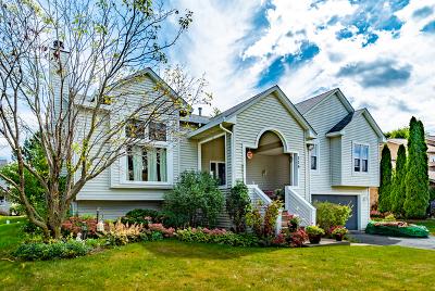 Bolingbrook Single Family Home New: 339 Stone Creek Drive