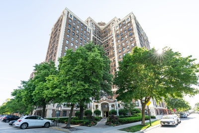 Chicago Condo/Townhouse New: 5555 South Everett Avenue #6D
