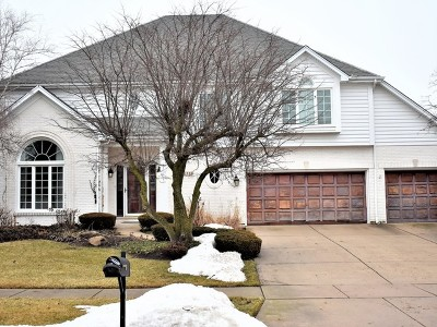 Naperville Single Family Home New: 4119 Kingshill Circle