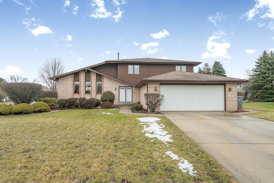 Orland Park Single Family Home New: 11323 Brook Hill Drive