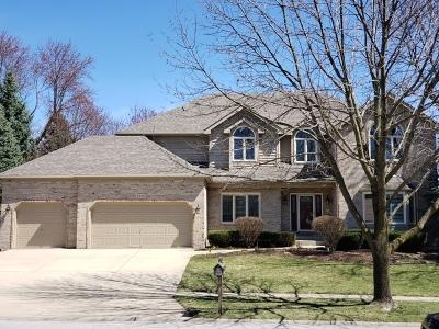Naperville Single Family Home New: 1035 Sheringham Drive
