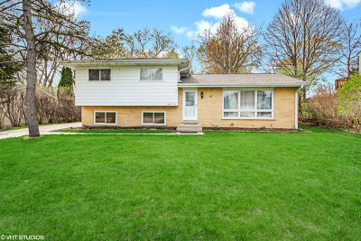Barrington Single Family Home For Sale: 906 South Summit Street