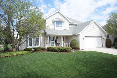 New Lenox IL Single Family Home New: $346,808