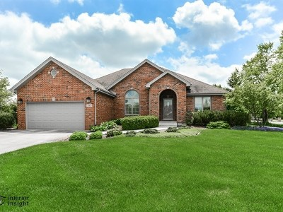 New Lenox IL Single Family Home New: $369,900
