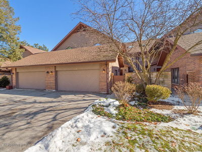 Hinsdale IL Condo/Townhouse New: $849,000