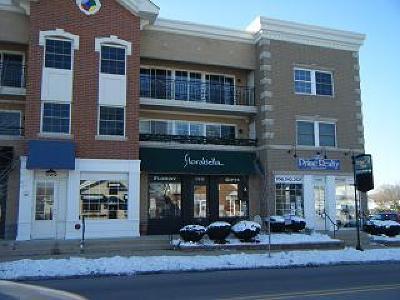 Tinley Park Commercial For Sale: 17210 Oak Park Avenue