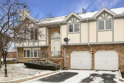 Tinley Park IL Condo/Townhouse New: $190,000
