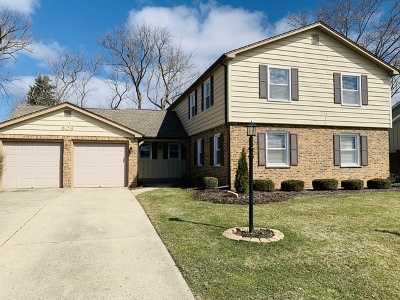 Palatine Single Family Home For Sale: 508 East Carpenter Drive