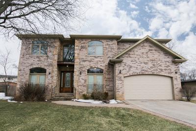 Highland Park Single Family Home For Sale: 865 Ridge Road