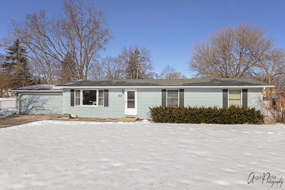 Spring Grove Single Family Home New: 102 Chillems Drive