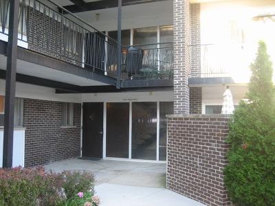 Skokie Condo/Townhouse New: 10124 Peach Parkway #N107