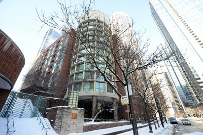 Condo/Townhouse New: 480 North McClurg Court #605