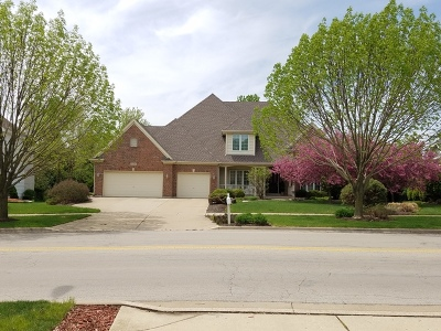 Naperville Single Family Home New: 2335 Modaff Road