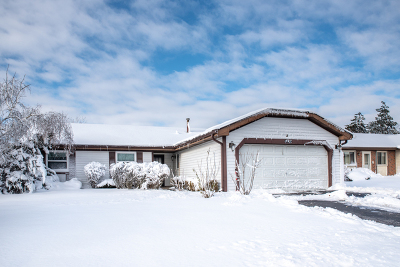 Hanover Park Single Family Home New: 4510 Zeppelin Drive