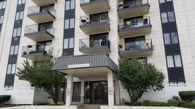 Niles Condo/Townhouse New: 9078 West Heathwood Drive #2A