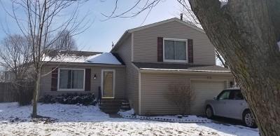 Bolingbrook Single Family Home New: 112 Glen Lake Drive