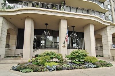 Chicago Condo/Townhouse New: 1040 North Lake Shore Drive #5A