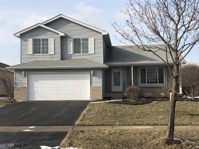 Joliet IL Single Family Home New: $234,900