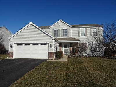 Plainfield Single Family Home New: 25104 Rockwell Lane