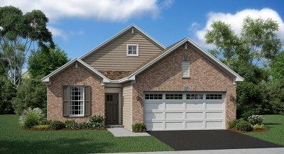 Crystal Lake Single Family Home New: 1101 Black Cherry Drive